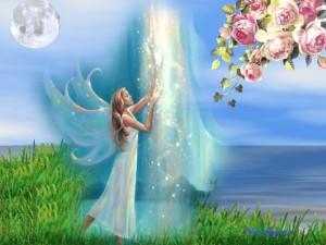 фея любви